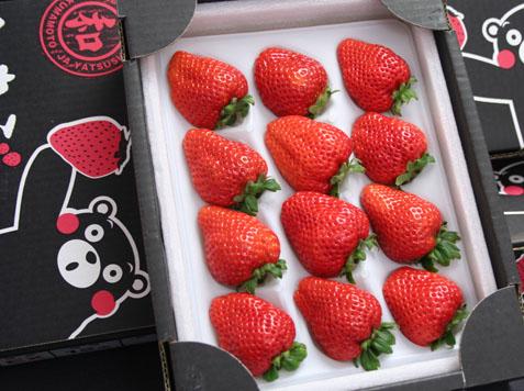 熊本産いちご『ひのしずく苺』12個(化粧箱)
